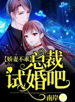 完本小说《娇妻不乖总裁试婚吧!》小说免费阅读